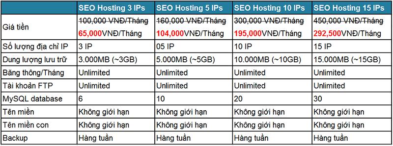 SEO hosting, dịch vụ seo hosting, hosting seo, host seo, seo host